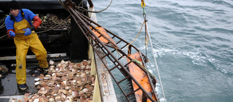 France frees impounded British scallop trawler