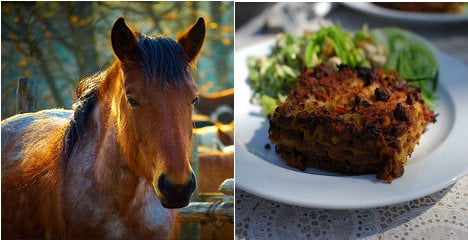 French store finds horsemeat in lasagnes