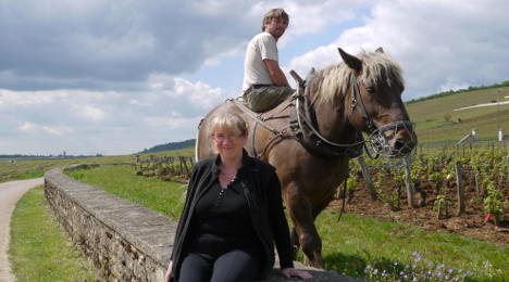 'Burgundy is about much more than just wine'