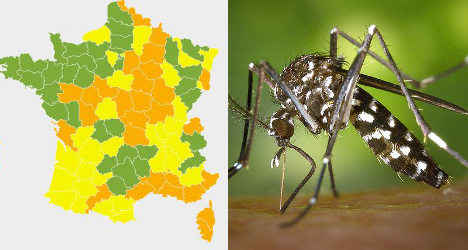 France maps out defence for war on mosquitos