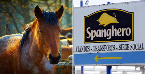 Cops grill ex-managers over horsemeat scandal