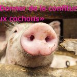 """""""Donner de la confiture aux cochons"""" translates as """"to give the jam to the pigs"""". This has surely been said around Christmas time in certain French households.Photo: <a href=""""http://shutr.bz/1qvXDlN"""">Shutterstock</a>"""