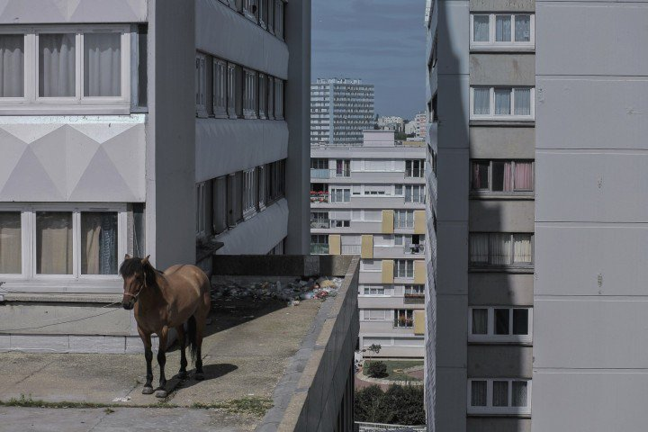 'Every Sunday' – Extraordinary images of ordinary life in the poor Paris suburbs