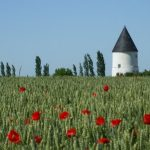 First up is the converted mill in the tranquil village of Vouillé-les-Marais,  in the Vendée department of western France. The stand out feature is the price - just €130,800. The property's easy to reach, close to motorways and the La Rochelle airport, yet sits in very peaceful rural surroundings. Photo: Leggett