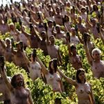 <b>Wine buff:</b> Scores of naked people posed for US photographer Spencer Tunick in a Bourgogne (Burgundy) vineyard in 2009. He's made a career out of convincing people to shed their clothes for his pictures.Photo: afp