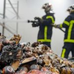 Blaze ruins Christmas for 15,000 poor in France