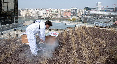 New rooftops to go green all over France