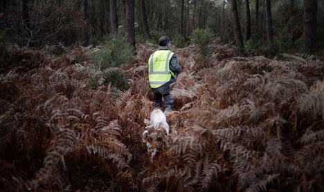 Dog accidentally shoots hunter in France