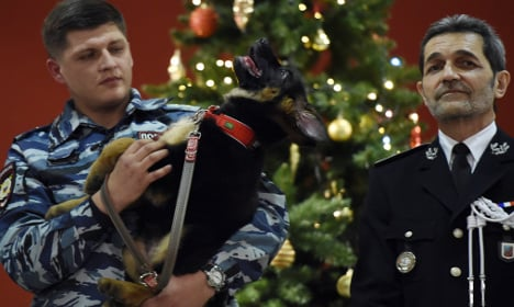 Russia gifts France pup after police raid dog slain