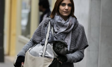 Welcome to Paris - Where dogs are treated like royalty