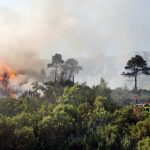 Provence on maximum alert over risk of forest fires