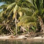 Two French volunteers 'murdered off Madagascar'
