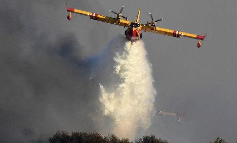 Blaze rages in Europe's biggest maritime pine forest