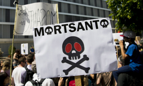Bayer-Monsanto deal 'danger for our food': French chefs