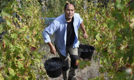 How an 'extreme' winemaker from Japan made it in France