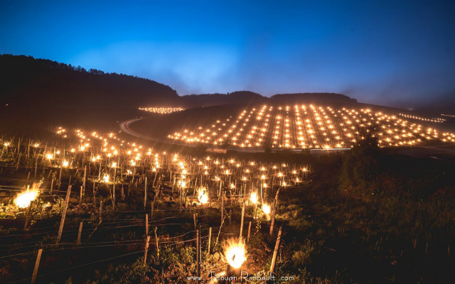 French winemakers come up with spectacular show to beat the frost