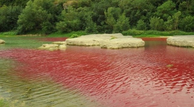 River in France turns blood red... but there's no need to panic