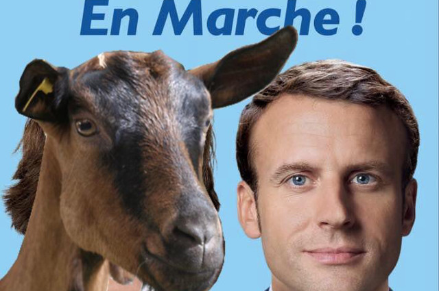 Analysis: Desire for change saw the French ready to elect 'goats, donkeys and hippos'