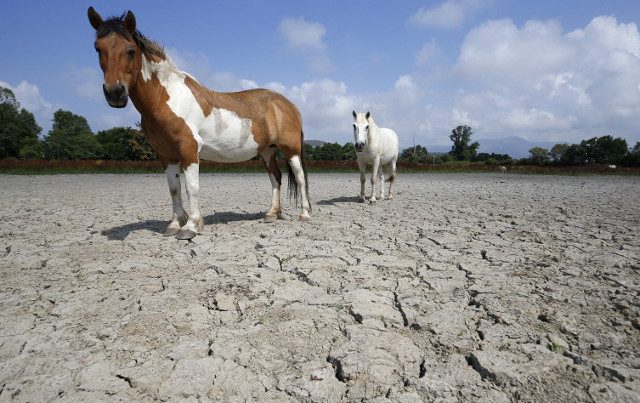 France hit by drought: What you need to know about water restrictions