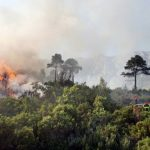 Provence on maximum alert for forest fires