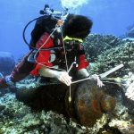 New clue could solve the 230-year-old mystery of French explorer's disappearance