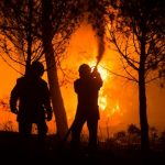 14-year-old charged with starting nearly 20 wildfires in southern France