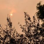 Brittany 'apocalypse': Hurricane Ophelia brings yellow skies and burning odour