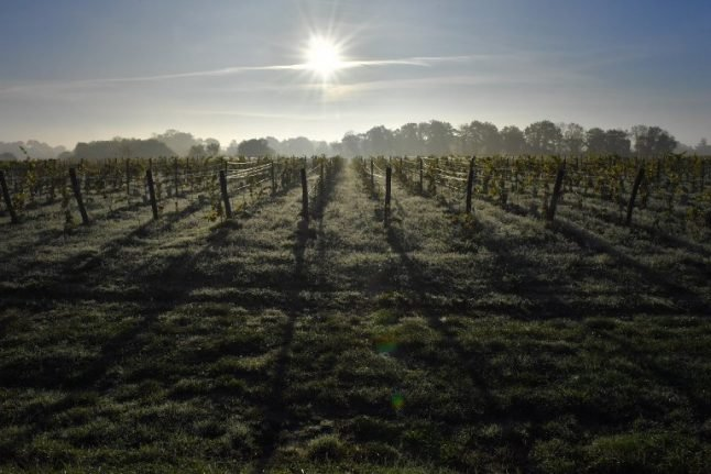 Just how bad is France's wine shortage going to get?