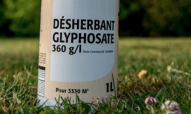 France to ban controversial weedkiller 'within three years' despite EU vote