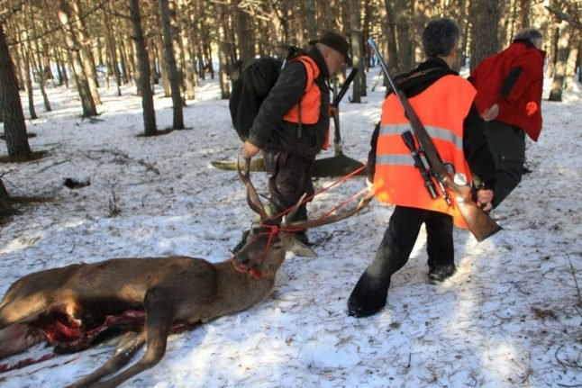 Cornered deer kills French hunter after goring him with its antlers