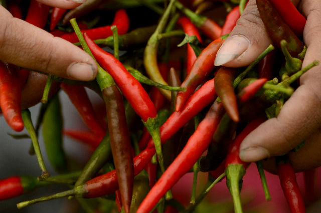 School pupils in France told to stop rubbing chillies in each other's eyes