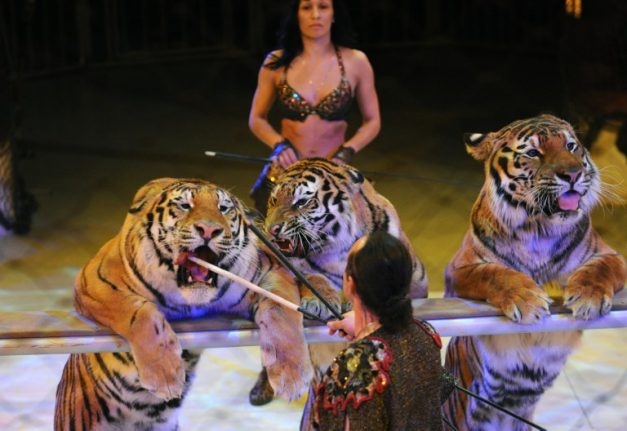 Paris vows to ban use of wild animals in circuses