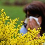 Atchoo! Pollen levels in Paris at 25-year high