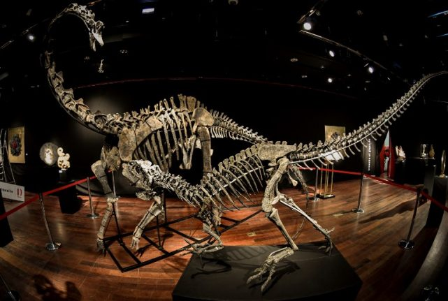 Two 'trendy' dinosaurs go up for sale in Paris (for those who have enough room)