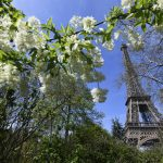 In Pictures: Delightful photos of France at its spring best