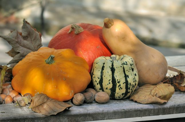 Don't eat bitter pumpkin, French doctor warns after women lose hair