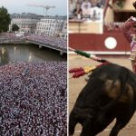 Bullfighting: Should you really go to the Bayonne Festival?