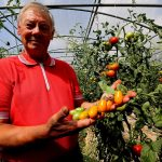 French tomato grower with cancer takes on Monsanto over weedkiller