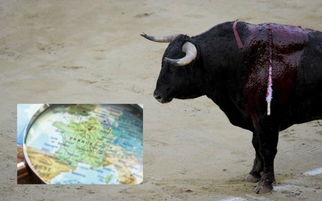 Glance around France: Bull kills spectator in the Gard, pasta warning and mosquitoes in France for Christmas