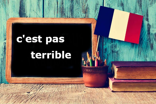 French Expression of the Day: C'est pas terrible