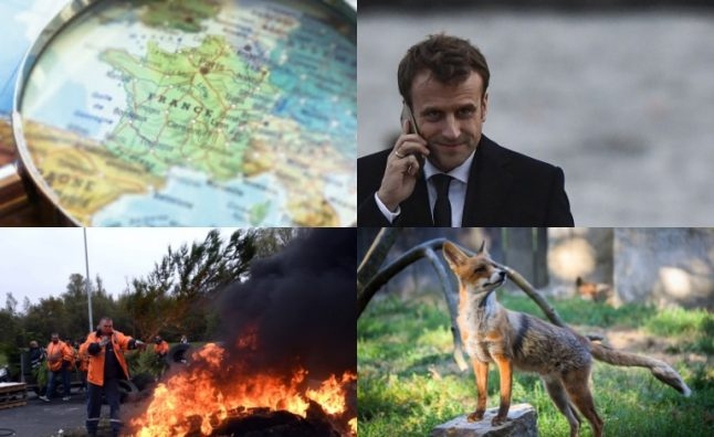 A Glance around France: €500 fox hunting bonuses and court for troll who called Elysee 200 times in 24 hours