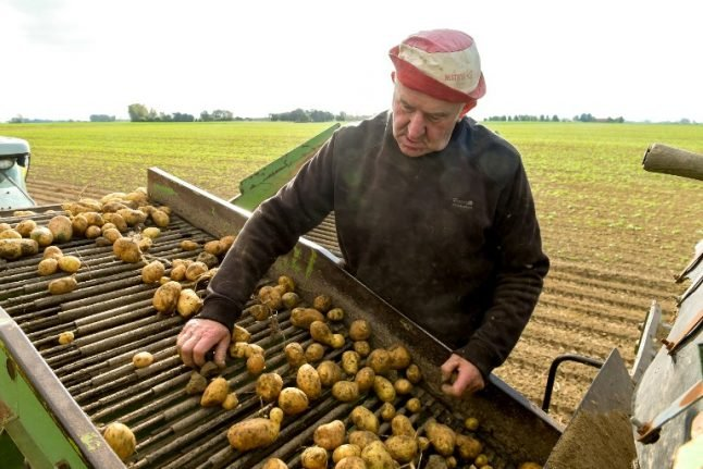 Has the summer drought left France heading for a spud shortage?