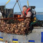 Is Brexit about to rewrite the rules for fishing on the English Channel?
