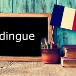 French Word of the Day: Dingue