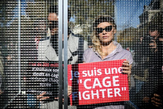 'Cage fighter': Pamela Anderson gets behind bars in Paris animal rights protest