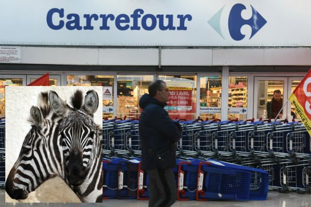 French supermarkets blasted for selling zebra meat