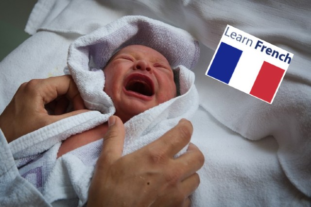 Why has France's birth rate dropped for a fourth year in a row?