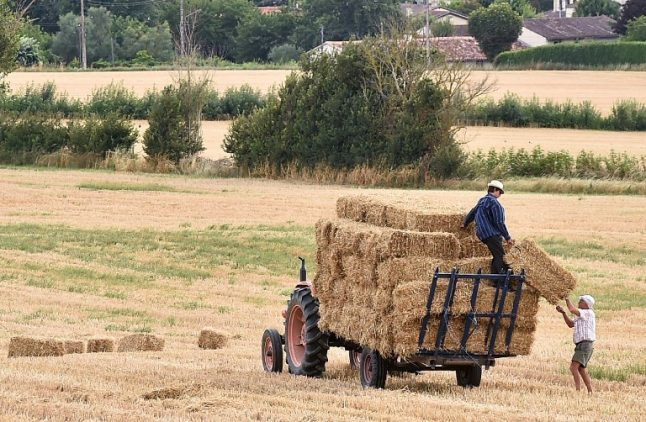 ANALYSIS: 'Farming doesn't feed us': The story of France's ailing agriculture