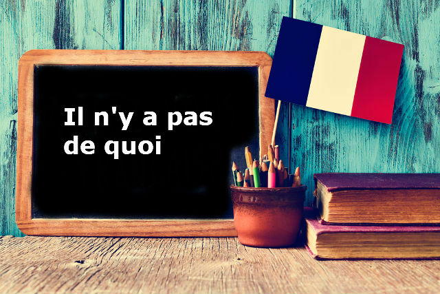 French Expression of the Day: Il n'y a pas de quoi