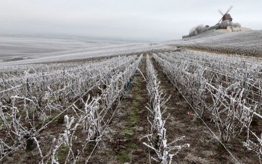 France braced for an icy blast with frost and snow forecast for weekend